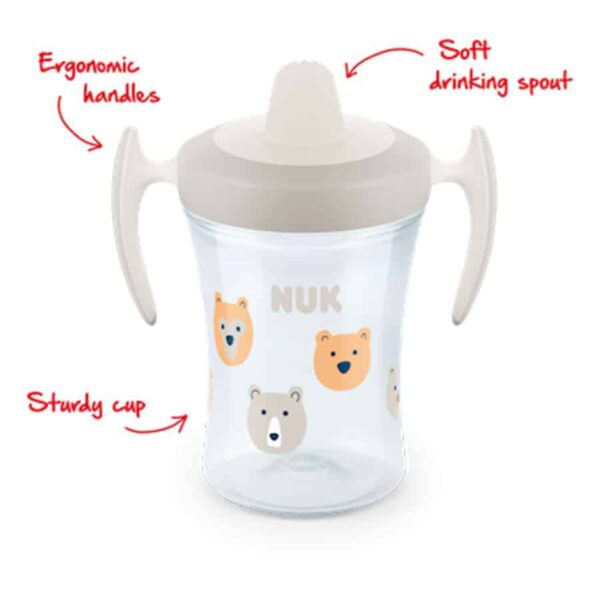 Nuk-trainer-cup-230ml-with-spout-1